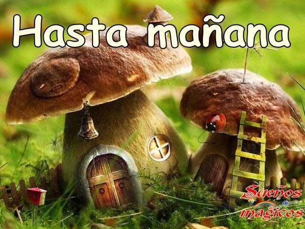 Feliz Dia De Gracias >> Hasta Mañana Imágenes, Fotos y Gifs para Compartir (Página 2) - Imágenes Cool